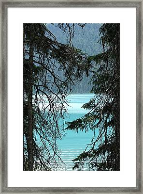 Framed Print featuring the photograph Blue Whisper by Al Fritz