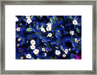 Blue White I Framed Print