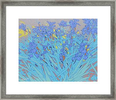 Blue Wild Irises Framed Print by Malcolm Warrilow