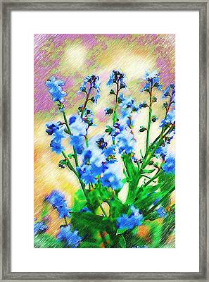 Framed Print featuring the photograph Blue Wildflowers by Donna Bentley