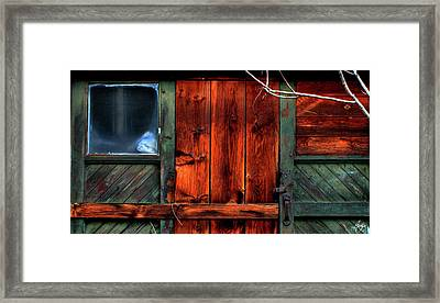 Blue Window On A Weathered Door Framed Print by Wayne King