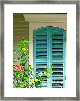 Blue Window With Red Flower Framed Print by Jeanne  Woods