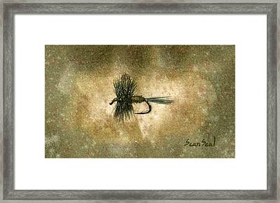 Blue Winged Olive Framed Print by Sean Seal