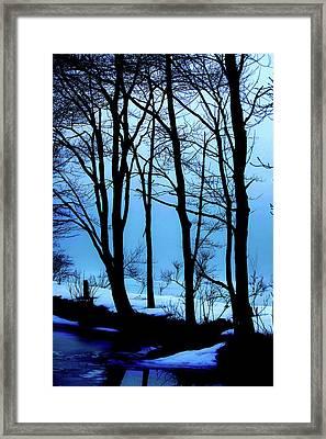 Blue Woods Framed Print by Karol Livote