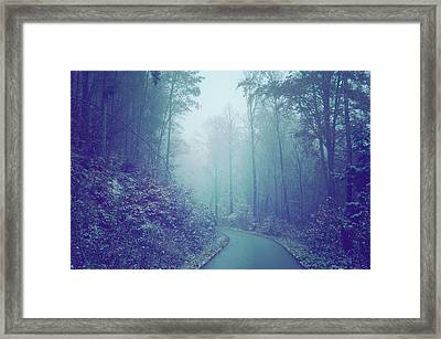 Blue Woods. Misty Way Framed Print