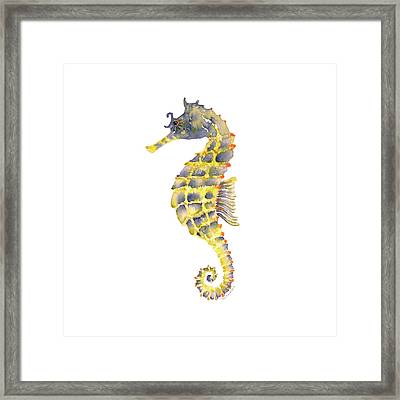 Blue Yellow Seahorse - Square Framed Print by Amy Kirkpatrick
