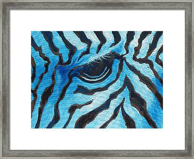 Blue Zebra Framed Print by Sandy Tracey