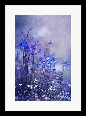 Blueish Framed Prints