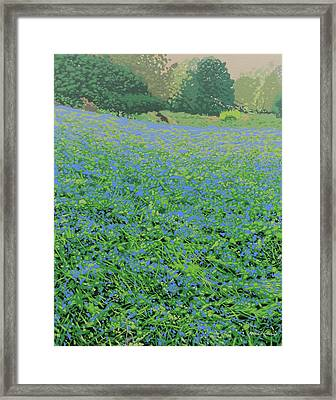 Bluebell Hill Framed Print by Malcolm Warrilow