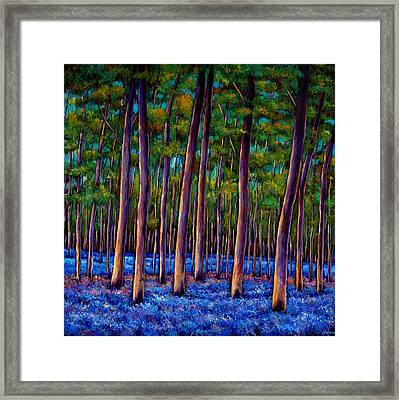 Bluebell Wood Framed Print by Johnathan Harris
