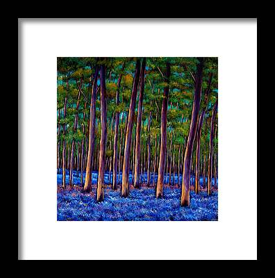 Forests Framed Prints