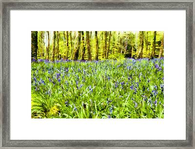 Bluebell Wood Framed Print by Nigel R Bell