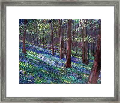 Bluebell Woods Framed Print by Li Newton