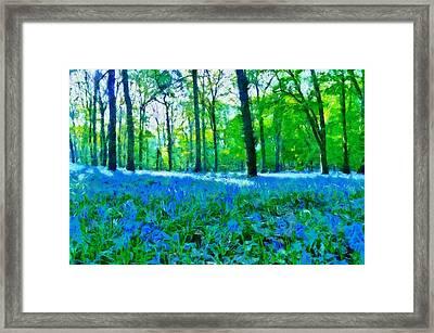 Bluebells In Woodland Framed Print