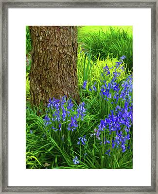 Framed Print featuring the photograph Bluebells Of Springtime  by Connie Handscomb