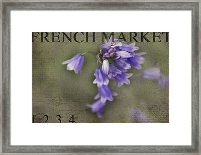Bluebells Framed Print by Rebecca Cozart