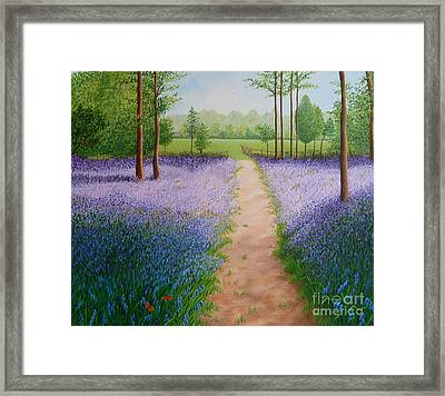 Bluebells With Butterflies Framed Print