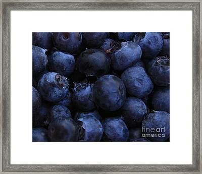 Blueberries Close-up - Horizontal Framed Print by Carol Groenen