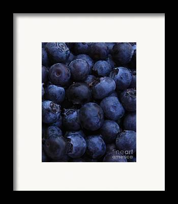 Blueberries Framed Prints