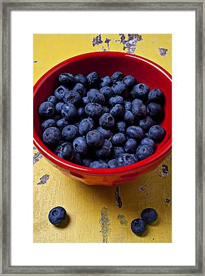 Blueberries In Red Bowl Framed Print by Garry Gay