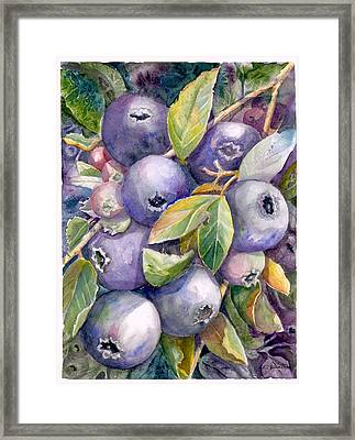 Blueberries Framed Print by KC Winters