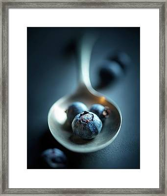 Blueberries Macro Still Life Framed Print