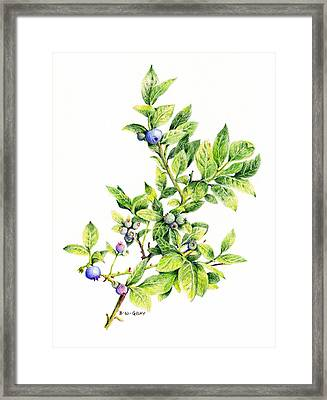 Blueberry Branch Framed Print
