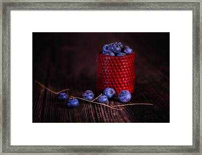 Blueberry Delight Framed Print