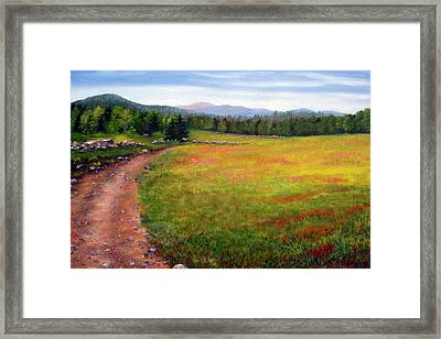 Blueberry Field 09 Framed Print by Laura Tasheiko