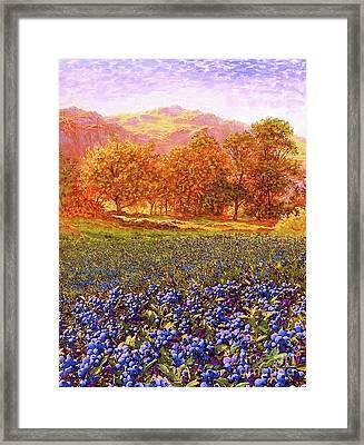 Blueberry Fields Season Of Blueberries Framed Print
