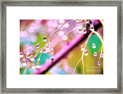 Blueberry Pearls Framed Print