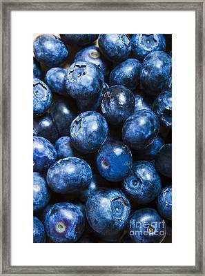 Blueberrys Background Framed Print by Jorgo Photography - Wall Art Gallery