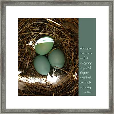 Bluebird Eggs With Buddha Quote Framed Print by Heidi Hermes