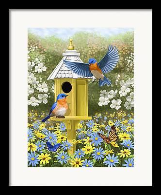 Butterfly In Flight Framed Prints