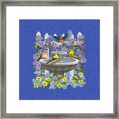 Bluebird Goldfinch Birdbath Garden Royal Blue Framed Print