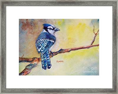 Bluebird Framed Print by Joyce A Guariglia