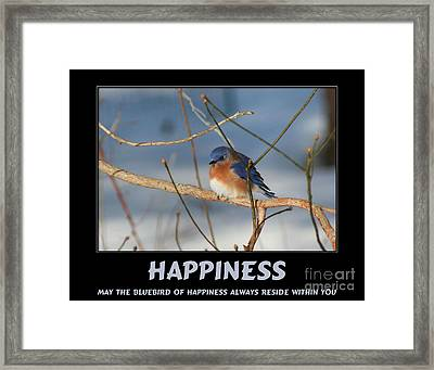 Bluebird Of Happiness Framed Print