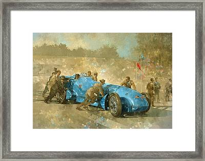 Bluebird Framed Print by Peter Miller