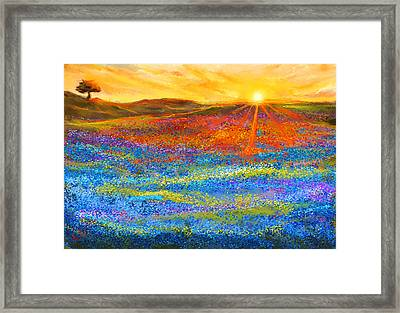 Bluebonnet Horizon - Bluebonnet Field Sunset Framed Print