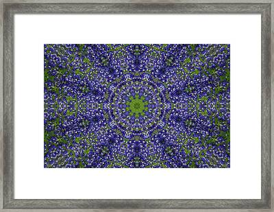 Bluebonnet Lace Kaleidoscope Framed Print by Robyn Stacey