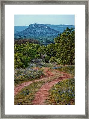 Bluebonnet Road Framed Print
