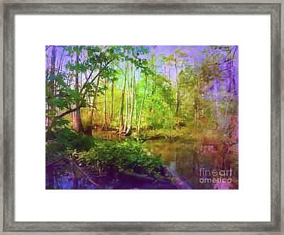 Bluebonnet Swamp Framed Print by Judi Bagwell