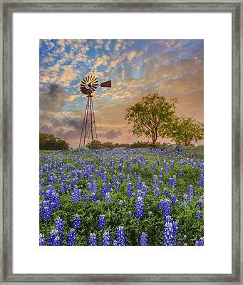 Bluebonnets Beneath A Windmill 2 Framed Print