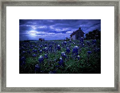 Framed Print featuring the photograph Bluebonnets In The Blue Hour by Linda Unger