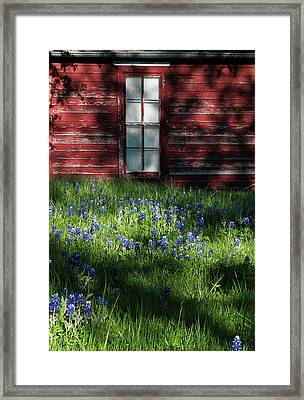 Framed Print featuring the photograph Bluebonnets In The Shade by David and Carol Kelly