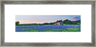 Bluebonnets Sunset At The Farm Pano Framed Print
