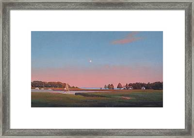 Bluefish Sail Framed Print