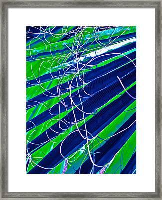 Bluegreen Palm Fun Framed Print by Gwyn Newcombe