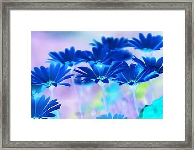 Bluemination Framed Print