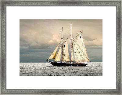Bluenose Framed Print by Fred LeBlanc